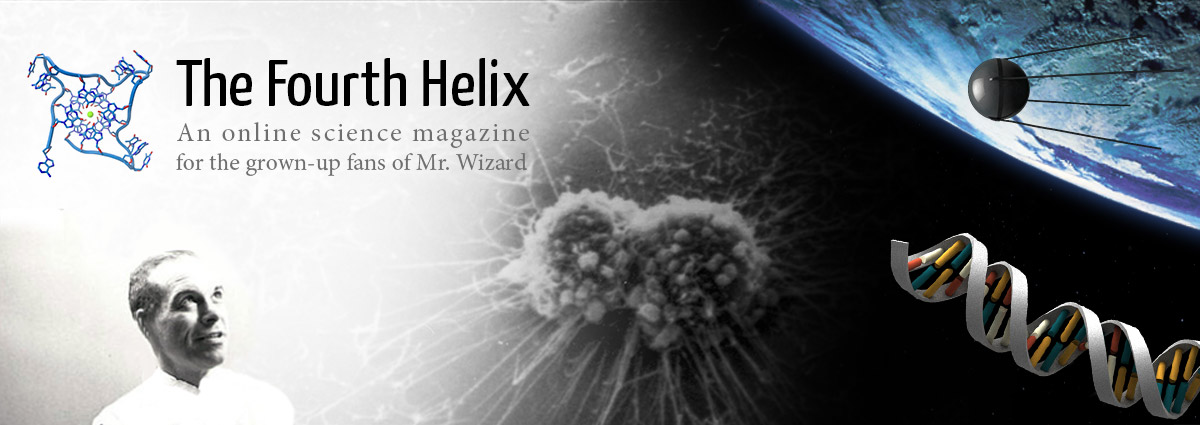 The Fourth Helix